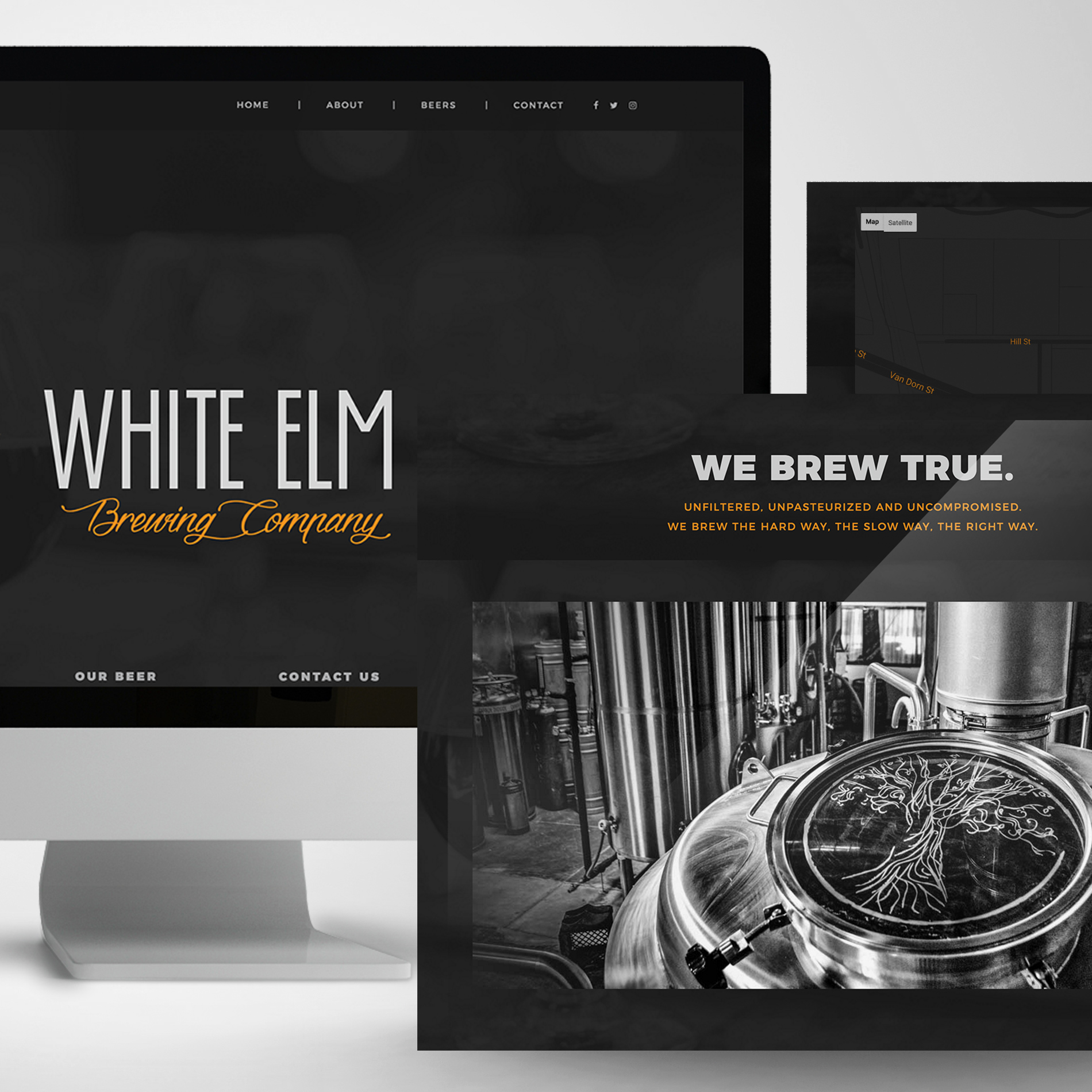 White Elm Project Thumbnail